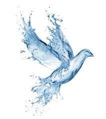 Les baptisés de Pâques